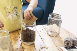 Quel kit prêt à pousser d'herbes aromatiques choisir ?